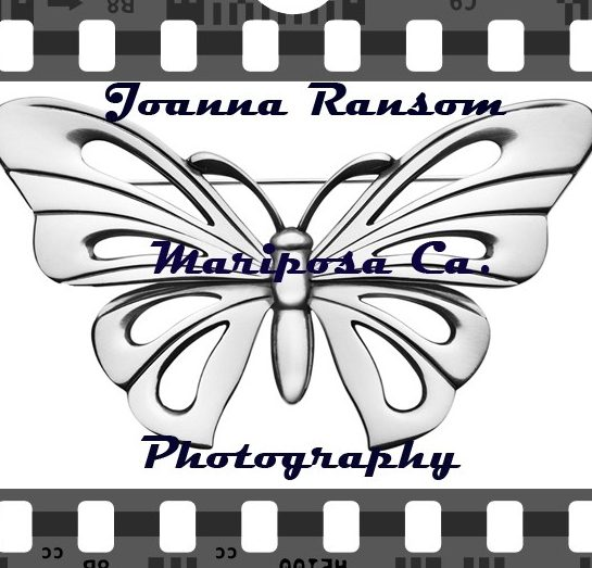 Photographer Joanna Ransom